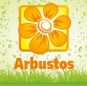 Arbustos - Jardimdaceleste.com - Plantas Tropicais & Exóticas!