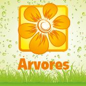 Árvores - Jardimdaceleste.com - Plantas Tropicais & Exóticas!