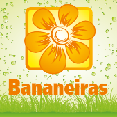 Bananeiras - Jardimdaceleste.com - Plantas Tropicais & Exóticas!