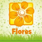 Flores - Jardimdaceleste.com - Plantas Tropicais & Exóticas!