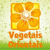 Vegetais Orientais - Jardimdaceleste.com - Plantas Tropicais & Exóticas!